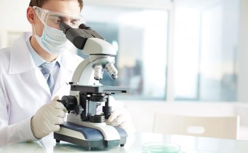HPV o VPH (Virus de Papiloma Humano)